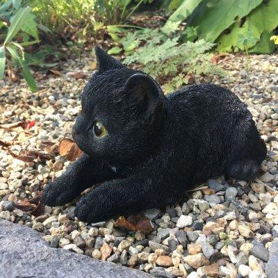 画像1: リラックス猫